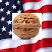 AmericanNut